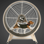 Dog Exercise Wheel