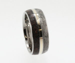Meteorite Dinosaur Bone Gold Ring