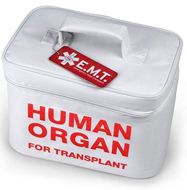Human organ lunchbox #giftideas
