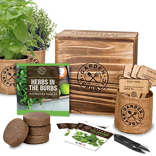 Indoor Herb Garden Starter Kit - Heirloom, Non-gmo