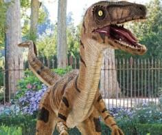 Life Sized Velociraptor Statue